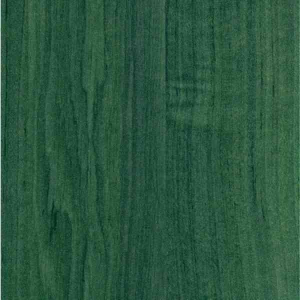 Дуб зеленый